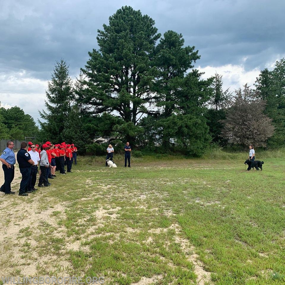 Members of NJ Task Force 1 demonstrate the use of search dogs during their operations